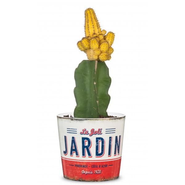 ΚΑΣΠΩ ΚΕΡΑΜΙΚΟ JARDIN mini 870/09|Ø 9 εκ.